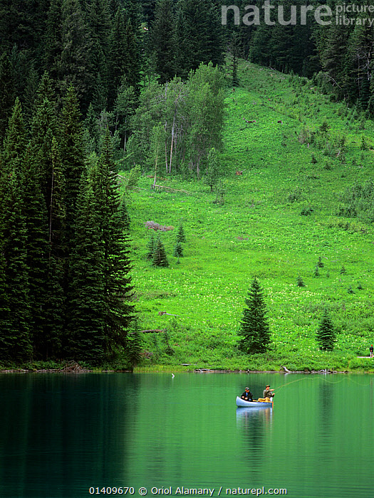 Fishermen fishing from a canoe on Emerald Lake, Yoho National Park, Rocky Mountains, British Columbia, Canada, CANADA,CANOEING,CANOES,FISHING,LAKES,LANDSCAPES,LEISURE,NORTH AMERICA,NP,OUTDOOR PURSUITS,PEOPLE,REFLECTIONS,RESERVE,TREES,WATER PURSUITS,SPORTS,WATERSPORTS,OPEN-BOATS,BOATS,National Park,PLANTS,,Canadian Rocky Mountain Parks World Heritage Site, UNESCO World Heritage Site,Rocky Mountains,Rockies,, Oriol Alamany