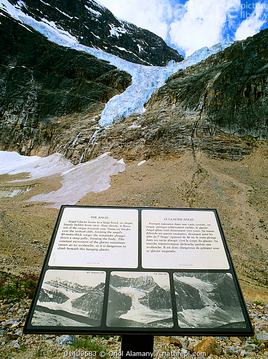 Information panel with photos  showing the Angel Glacier historic retreat from  1915, 1922 and 1978, Jasper National Park, Rocky Mountains, Alberta, Canada, CANADA,CLIMATE CHANGE,ENVIRONMENTAL,GLACIAL RETREAT,GLACIERS,GLOBAL WARMING,INFORMATION,MOUNTAINS,NORTH AMERICA,NP,RESERVE,SIGNS,Geology,National Park,,Canadian Rocky Mountain Parks World Heritage Site, UNESCO World Heritage Site,Rocky Mountains,Rockies,NP,Reserve,, Oriol Alamany