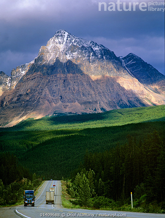 Trucks on Yellowhead Highway below Mount Fitzwilliam, Mount Robson Provincial Park, Rocky Mountains, British Columbia, Canada, CANADA,FORESTS,LANDSCAPES,LORRY,LORRYS,MOUNTAINS,NORTH AMERICA,RESERVES,ROADS,TRANSPORT,TRANSPORTATION,TRUCKS,VEHICLES,VERTICAL,,Canadian Rocky Mountain Parks World Heritage Site, UNESCO World Heritage Site, Rocky Mountains,Rockies,, Oriol Alamany