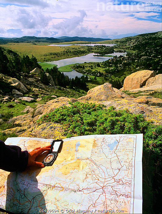 Hiker orienting a map with a compass in Estanys de Les Bouillouses, Pyrenees Catalanes Natural Park,  Languedoc-Roussillon, France, COMPASS,DIRECTION,EUROPE,HANDS,HIKING,LANDSCAPES,MAPS,MOUNTAINEERING,PEOPLE,RESERVES,RIVERS,TREES,TREKKING,VERTICAL,WALKING,SPORTS,PLANTS, Oriol Alamany