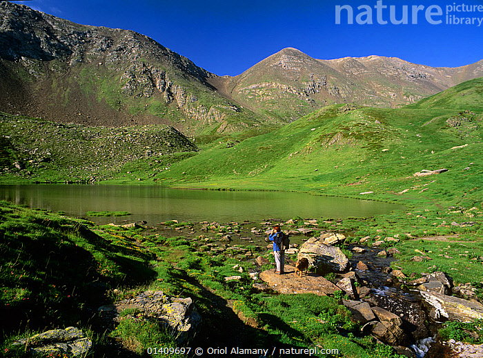 Hiker  with dog on the shores of Estany de Filia� alpine lake in Vall Fosca, Pyrenees, Pallars Jussa, Catalonia, Spain. Model released, DOGS,DOMESTIC,EUROPE,HIKING,LAKES,LANDSCAPES,MOUNTAINEERING,MOUNTAINS,PEOPLE,PETS,TREKKING,WALKING,SPORTS, Oriol Alamany