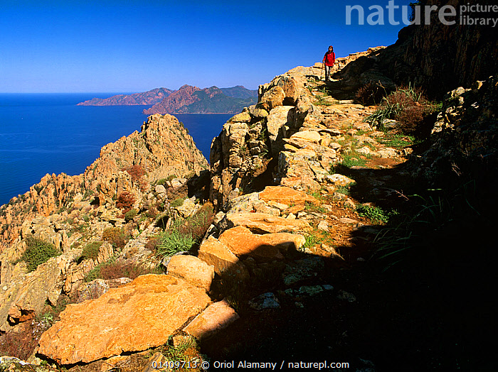 Hiker walking the Calanche de Piana, Corse-du-Sud, Corsica Island, France, Model released., blue sky,Calanche de Piana,catalogue5,CLIFFS,coastal,COASTS,Corse du Sud,Corsica Island,Discovery,EUROPE,FRANCE,hiker,hiking,hobbies,LANDSCAPES,LEISURE,MEDITERRANEAN,mid adult,MOUNTAINEERING,one person,one woman only,outdoors,path,PEOPLE,sea,solitary,sunlight,THE SEA,trekking,walker,WALKING,WOMAN,Geology,SPORTS, Oriol Alamany