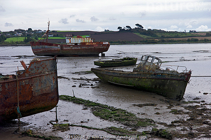 Rusting boats at Appledore on the River Torridge, North Devon, England, October 2012.  ,  BOATS,COASTS,ENGLAND,EUROPE,MUD,OLD,RIVERS,RUST,RUSTED,RUSTY,UK,WORKING BOATS,United Kingdom  ,  Rob Cousins