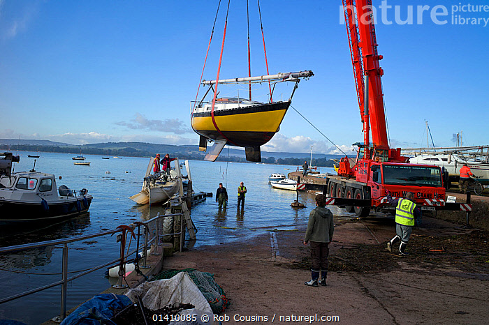 Lifting boats out of the water for winter maintenance, Lympstone, Exe Estuary, Devon, England, October 2012.  ,  AIR,BOATS,COASTS,CRANES,DRY LAND,ENGLAND,EUROPE,HARNESSES,LAUNCHING,MOVEMENT,PEOPLE,RIVERS,SAILING BOATS,UK,VEHICLES,YACHTS,United Kingdom  ,  Rob Cousins