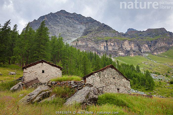 Abandoned farm buildings in mountain landscape, Aosta Valley, Monte Rosa Massif, Pennine Alps, Italy. July 2012, ALPINE,ALPS,BUILDINGS,EUROPE,FARMS,HIGHLANDS,ITALY,LANDSCAPES,MOUNTAINS,OLD,SUMMER, Alex Hyde