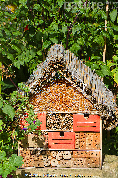 Artificial nesting place for insects 'bug hotel'. Lower Saxony, Germany, September., CONSERVATION,ECOLOGY,EUROPE,GERMANY,INSECTS,NESTS,SHELTER,Invertebrates, Kerstin Hinze