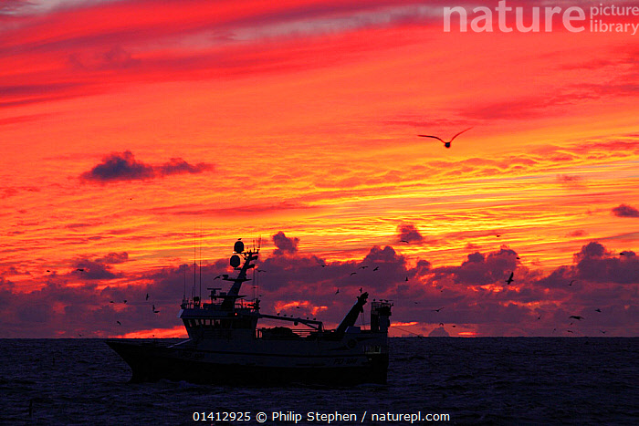 Dawn breaking over fishing vessel on the North Sea, Europe, November 2012. Property released., ATMOSPHERIC,BOATS,CLOUDS,EUROPE,FISHING BOATS,PROFILE,SILHOUETTES,SKIES,SUNRISE,WORKING BOATS,Weather, Philip Stephen