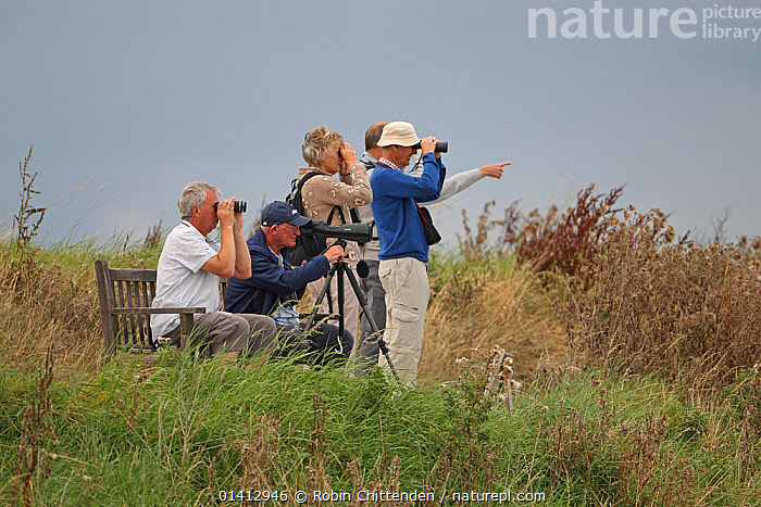 Birdwatchers looking through binoculars and scope RSPB Titchwell, Norfolk, UK, September 2012., BIRDWATCHING,ENGLAND,EUROPE,LEISURE,MEN,OUTDOORS,PEOPLE,RESERVE,UK,WOMEN,United Kingdom, Robin Chittenden