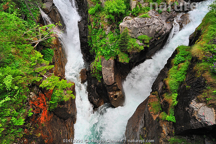 Waterfall and confluence of the Gave de Marcadau and the Gaube at the Pont d'Espagne, Hautes-Pyrenees near Cauterets, Pyrenees, France, June 2012, EUROPE,FRANCE,FRESHWATER,HIGHLANDS,LANDSCAPES,MOUNTAINS,PLANTS,ROCKS,WATER,WATERFALLS, Philippe Clement