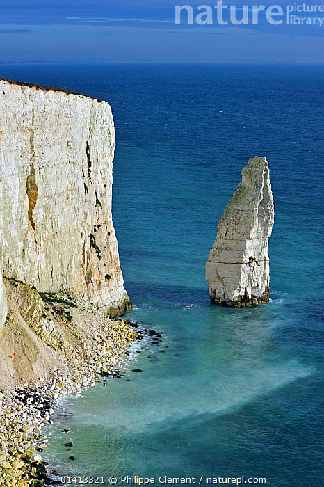 The eroded chalk sea stack The Pinnacles near Old Harry Rocks at Handfast Point on the Isle of Purbeck along the Jurassic Coast in Dorset, UK November 2012, CHALK,CLIFFS,COASTAL,COASTS,DORSET,ENGLAND,EROSION,EUROPE,GEOLOGY,LANDSCAPES,MARINE,ROCK FORMATIONS,SEA,STACKS,UK,UNESCO,VERTICAL,WORLD HERITAGE,United Kingdom, Philippe Clement