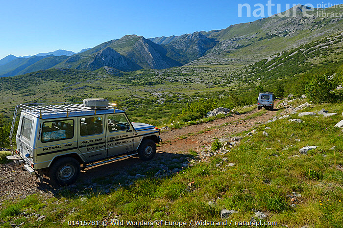 Vehicles belonging to Safari tour operator Velebit Photo Safaris on road in Paklenica National Park, Velebit Nature Park, Rewilding Europe area, Velebit mountains, Croatia June 2012  ,  CARS,CROATIA,EASTERN EUROPE,EUROPE,HIGHLANDS,HOLIDAYS,LANDSCAPES,MOUNTAINS,NATIONAL PARK,NP,PEOPLE,PHOTOGRAPHERS,PHOTOGRAPHY,RESERVE,REWILDING,ROADS,STAFFAN WIDSTRAND,TOURISM,TRANSPORT,TRAVEL,TRAVELLING,VEHICLES,VELEBIT,WWE,Concepts  ,  Wild Wonders of Europe / Widstrand