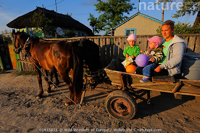 Family travelling by traditional horse and cart means, Letea, Danube delta rewilding area, Romania May 2012  ,  CART,CHILDREN,DANUBE,DELTA,EASTERN EUROPE,EUROPE,FAMILIES,FEMALES,HORSES,MOTHER,PEOPLE,REWILDING,RURAL,STAFFAN WIDSTRAND,TRADITIONAL,TRANSPORT,WETLANDS,WORKING ANIMALS,WWE  ,  Wild Wonders of Europe / Widstrand