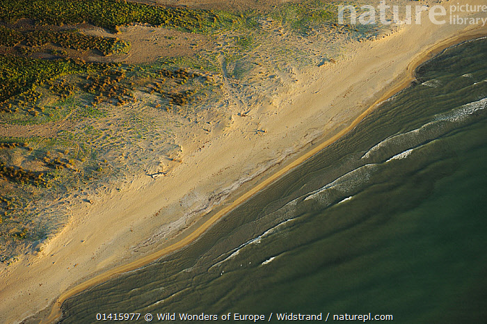 Aerial view over the Danube delta rewilding area, with water lapping on shoreline, Romania, June 2012  ,  AERIALS,DANUBE,DELTA,EASTERN EUROPE,EUROPE,HABITAT,LANDSCAPES,LAPPING,REWILDING,RIVERS,SHORELINE,STAFFAN WIDSTRAND,WATER,WAVES,WETLANDS,WWE  ,  Wild Wonders of Europe / Widstrand