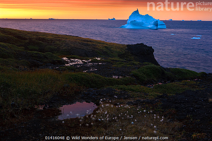 Iceberg off the coast of Disco bay at sunrise, Qeqertarsuaq Greenland, August 2009. Exclusive Japanese calendar rights for 2014.  ,  ATLANTIC OCEAN,BAFFIN BAY,COASTS,EUROPE,GREENLAND,ICEBERGS,KAI JENSEN,LANDSCAPES,OCEANS,SUNRISE,WWE  ,  Wild Wonders of Europe / Jensen