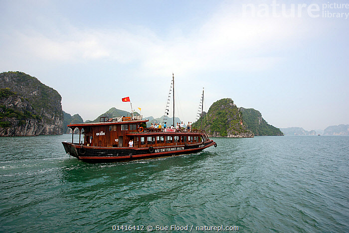Junk boat in Ha Long Bay, a UNESCO World Heritage Site, and a popular travel destination, located in Quang Ninh province, Vietnam.  ,  ASIA,BOATS,COASTAL WATERS,COASTS,JUNKS,LANDSCAPES,PASSENGER FERRIES,SHIPS,SOUTH EAST ASIA,TRADITIONAL,TRANSPORT,TRAVEL,UNESCO,VIETNAM,WATER,WORKING BOATS,WORLD HERITAGE SITE,SAILING-BOATS ,WORKING-BOATS ,SOUTH-EAST-ASIA  ,  Sue Flood