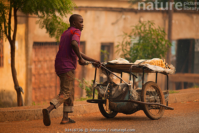 Street vendor with cart of sugar cane. Northern Cameroon, September 2009.  ,  ACTION,AFRICA,BUILDINGS,CAMEROON,FOOD,MAN,MOVING,OUTDOORS,PEOPLE,TRADE,TRADITIONAL,WEST AFRICA,WORKING , Bruce Davidson  ,  Jabruson