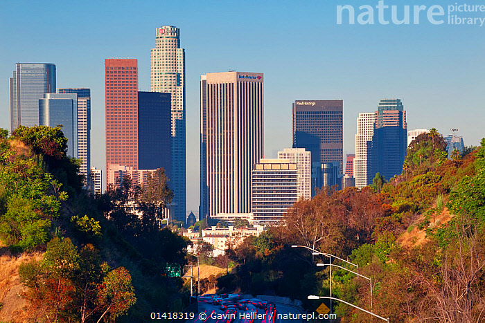 Pasadena Freeway, CA Highway 110, leading into downtown Los Angeles, California, USA, June 2011  ,  CARS,CITIES,HIGHWAY,LANDSCAPES,NORTH AMERICA,ROADS,SKYLINE,SKYSCRAPERS,TRAFFIC,TRANSPORT,TRAVEL,URBAN,USA,VEHICLES  ,  Gavin Hellier