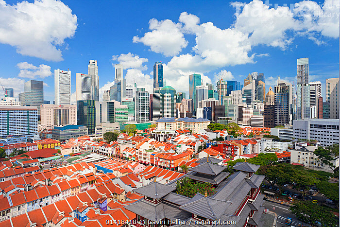 Elevated view over traditional houses in Chinatown, Singapore, 2012. No release available., AERIALS,architecture,ASIA,BUILDINGS,catalogue5,Chinatown,CITIES,city,cityscape,cityscapes,cloudy,contrasting,contrasts,districts,elevated view,HISTORICAL,HOMES,houses,housing,LANDSCAPES,MODERN,Nobody,office building,outdoors,Singapore,SKY,skyline,skyscrapers,SOUTH EAST ASIA,TRADITIONAL,Travel,TROPICAL,tropics,URBAN, Gavin Hellier