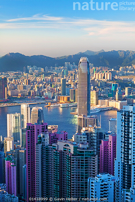 Elevated view from Victoria Peak, City Skyline and Victoria Harbour, Hong Kong, China 2009. No release available., architecture,ASIA,BUILDINGS,catalogue5,CHINA,CITIES,city,cityscape,cityscapes,COASTAL WATERS,COASTS,elevated view,hong kong,MODERN,Nobody,outdoors,Republic of China,skyline,skyscrapers,Travel,travel destination,URBAN,VERTICAL,Victoria Harbour,Victoria Peak,view to land,WATER, Gavin Hellier
