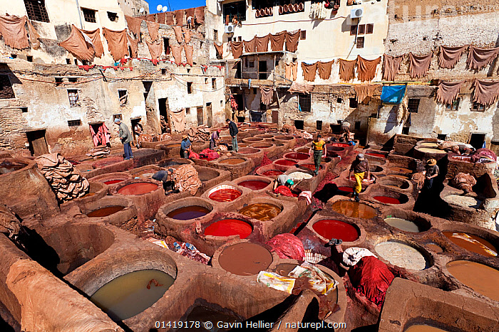 Chouwara traditional leather tannery in Old Fez, vats for tanning and dyeing leather hides and skins, Fez, Morocco, 2011  ,  AFRICA,CITIES,CRAFTS,CULTURES,DYES,EXPORT,INDUSTRY,LANDSCAPES,LEATHER,LEATHERWORK,NORTH AFRICA,PEOPLE,SKINS,TANNERY,TRADE,TRADITIONAL,TRAVEL,WORKING,NORTH-AFRICA  ,  Gavin Hellier