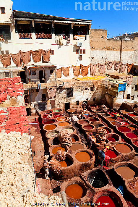 Chouwara traditional leather tannery in Old Fez, vats for tanning and dyeing leather hides and skins, Fez, Morocco, 2011  ,  AFRICA,BUILDINGS,CITIES,CRAFTS,CULTURES,DYES,EXPORT,INDUSTRY,LANDSCAPES,LEATHER,LEATHERWORK,NORTH AFRICA,PEOPLE,SKINS,TANNERY,TRADE,TRADITIONAL,TRAVEL,URBAN,VERTICAL,WORKING,NORTH-AFRICA  ,  Gavin Hellier