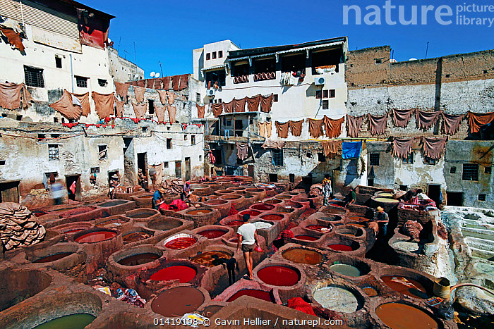 Chouwara traditional leather tannery in Old Fez, vats for tanning and dyeing leather hides and skins, Fez, Morocco, 2011  ,  AFRICA,CITIES,CRAFTS,CULTURES,DYEING,EXPORT,INDUSTRY,LANDSCAPES,LEATHER,LEATHERWORK,NORTH AFRICA,PEOPLE,SKINS,TANNERY,TRADE,TRADITIONAL,TRAVEL,WORKING,NORTH-AFRICA  ,  Gavin Hellier