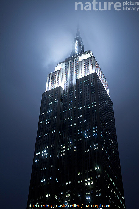 Looking up at the Empire State Building on a rainy evening, Manhattan, New York City, USA 2009. No release available., ATMOSPHERIC,ATTRACTION,BUILDINGS,CITIES,ICONIC,ILLUMINATED,LANDMARK,LANDSCAPES,LIGHTS,MODERN,NIGHT,NORTH AMERICA,SKYLINE,TRAVEL,URBAN,USA,VERTICAL,Catalogue5, Gavin Hellier