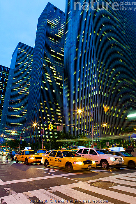 Typical yellow taxis below skyscrapers along Sixth Avenue, Manhattan, New York City, USA, 2009. No release available., BUILDINGS,cars,catalogue5,CITIES,city,electricity,high rise building,ILLUMINATED,LANDSCAPES,LIGHTS,lit up,low angle view,manhattan,MODERN,New York City,NIGHT,Nobody,NORTH AMERICA,outdoors,public transport,road junction,ROADS,Sixth Avenue,skyline,skyscraper,skyscrapers,taxi,taxis,Transport,transportation,Travel,URBAN,USA,using power,VEHICLES,VERTICAL,yellow cab, Gavin Hellier