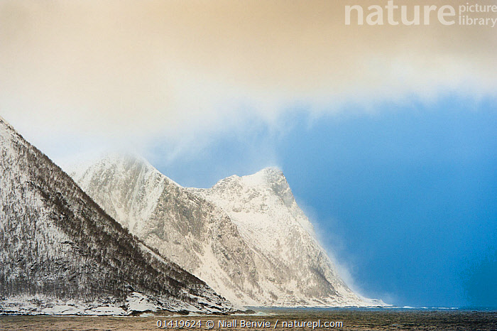 Snow squall falling on coastal mountains. Tortenberget across Ballesvika, Senja, Norway, February 2012., CLOUDS,COASTS,COLD,DRAMATIC,EUROPE,MOUNTAINS,SCANDINAVIA,SKIES,SNOW,SNOWING,STORMS,WEATHER,WINTER,CONCEPTS,Catalogue5,Wonder,Spectacular,, Niall Benvie