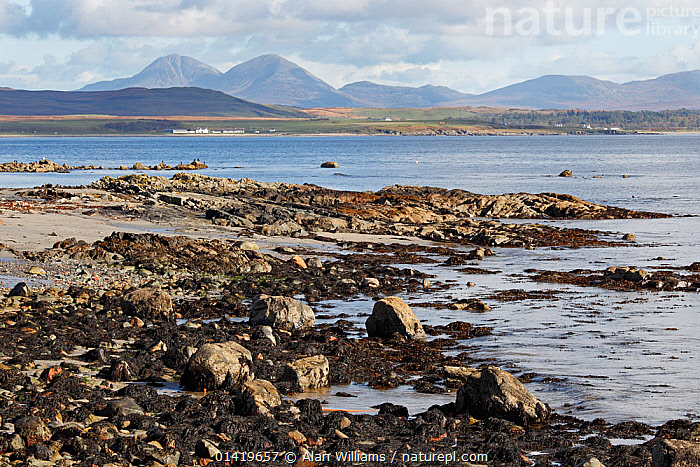 Loch Indaal looking from the west shore towards Bridgend with the Paps of Jura in the background Islay Scotland, UK, October  ,  EUROPE,FRESHWATER,LAKES,LANDSCAPES,MOUNTAINS,SCOTLAND,UK,WATER,United Kingdom  ,  Alan Williams