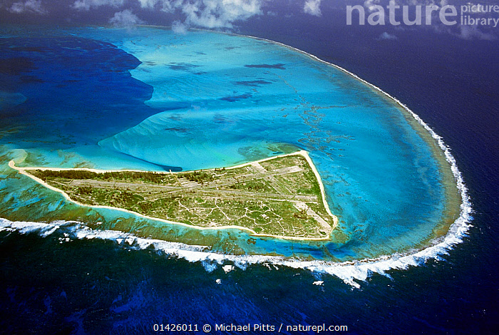 Nature Picture Library - Eastern Island showing the WW2