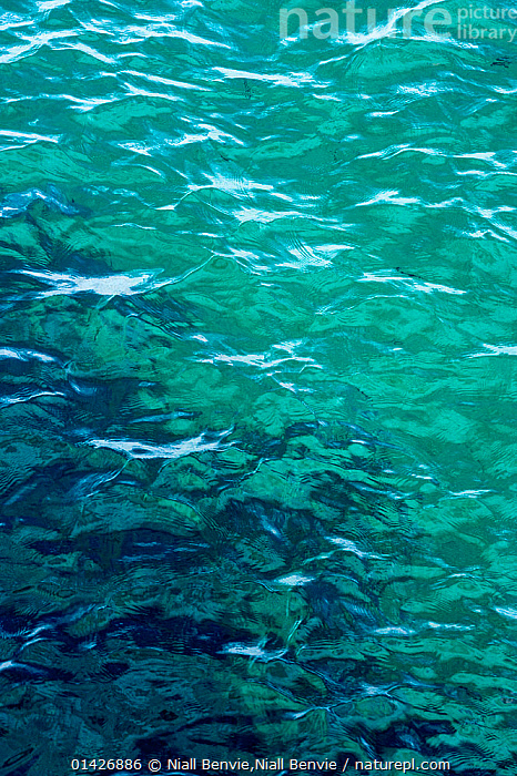 Detail of small waves on the eastern Atlantic. Isle of Coll, Scotland, October 2012., ABSTRACT,ARTY SHOTS,BACKGROUNDS,BLUE,EUROPE,GREEN,OCEANS,PATTERNS,seas,SURFACE,UK,VERTICAL,WATER,WAVES,catalogue6,SCOTLAND,Colour,Blue,Turquoise,Aqua,Aqua Blue,Torquoise,No One,Nobody,Europe,Western Europe,UK,Great Britain,Scotland,Full Frame,Light,Lights,Light Effect,Refraction,Prism,Prisms,Refractions,Shadow,Ocean,Atlantic Ocean,Outdoors,Open Air,Outside,Day,Backgrounds,Background,Marine,Water Surface,Saltwater,Hebrides,Inner Hebrides,Coll,Scottish islands,Scottish isles,Isle of Coll,United Kingdom, Niall Benvie,Niall Benvie