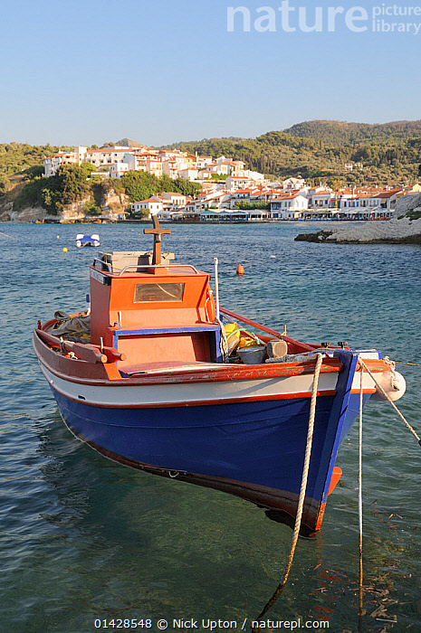 Fishing boat moored in Kokkari harbour. Samos, Greece, July.  ,  BOATS,BUILDINGS,COASTS,EUROPE,FISHING BOATS,FRONT VIEWS,GREECE,HARBOURS,LANDSCAPES,MEDITERRANEAN,MOORED,SEASCAPES,TOWNS,VERTICAL,WORKING BOATS  ,  Nick Upton