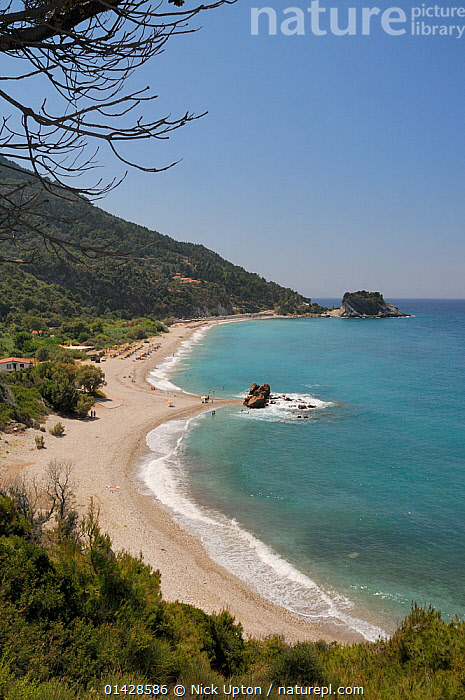 Overview of Potami beach near Karlovasi on the northeast coast of Samos. Eastern Sporades, Greece, July, 2012.  ,  BEACHES,BUILDINGS,COASTS,EUROPE,GREECE,LANDSCAPES,MEDITERRANEAN,OUTDOORS,PEOPLE,SEASCAPES,VERTICAL  ,  Nick Upton