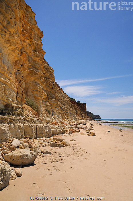 Weathered, layered sandstone cliffs at Praia do Mos, Lagos, Algarve, Portugal, June 2012.  ,  BEACHES,CLIFFS,COASTS,EROSION,EUROPE,GEOLOGY,LANDSCAPES,PORTUGAL,SEASCAPES,VERTICAL  ,  Nick Upton