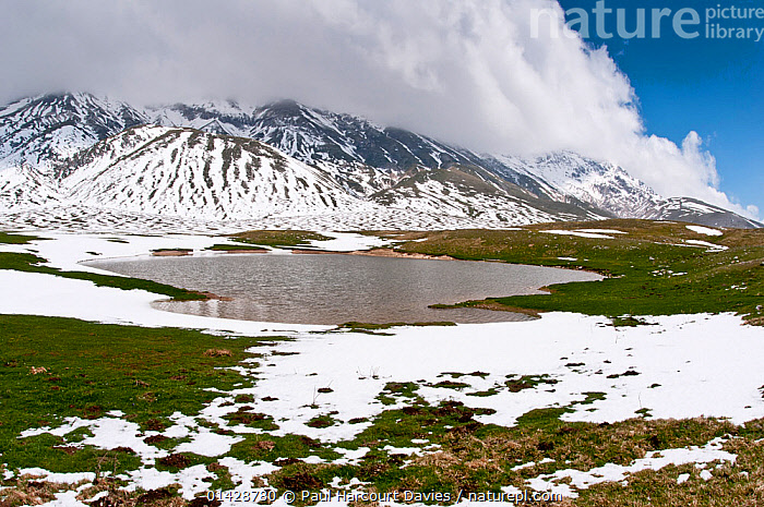 Campo Imperatore, as the snow melts Gran Sasso, Appennines, Abruzzo, Italy, June  ,  ALPINE,APPENINE,CLOUDS,EUROPE,FLOWERS,HABITAT,ITALY,LANDSCAPES,MOUNTAINS,SNOW,Weather,Apennines,Appennines,  ,  Paul Harcourt Davies