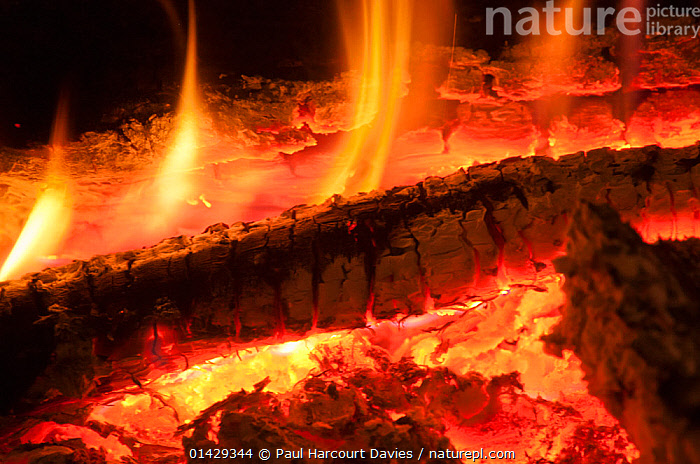 Interior of a log fire, Orvieto, Italy, April  ,  EUROPE,FIRE,FLAMES,HEAT,HOT,ITALY,RED,WOOD  ,  Paul Harcourt Davies