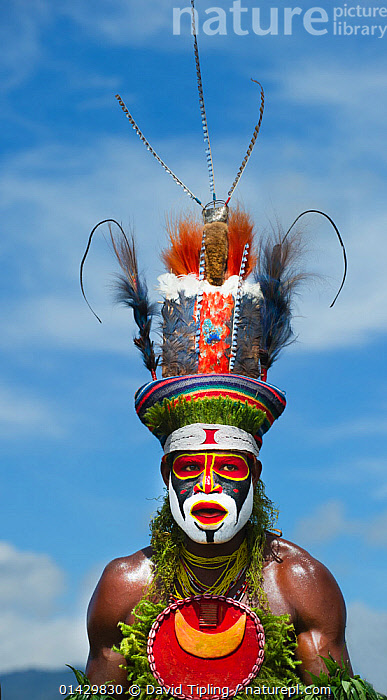 Nature Picture Library - Tribal performer from the Anglimp