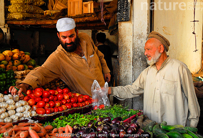 Man buying vegetables from a stall in Skardu bazaar, Pakistan, June 2007, ASIA,ASIAN ETHNICITY,FRUIT,INDIAN SUBCONTINENT,INDOORS,MARKET,MEN,PEOPLE,TRADE,VEGETABLES,Plants, Enrique Lopez-Tapia