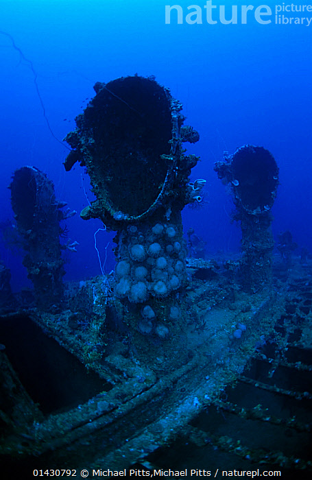 Engine room ventilator shafts of oil tanker 'Seiko Maru'. Sunk in Chuuk Lagoon 17/18th February 1944, Chuuk Lagoon, Pacific  ,  BOATS,MARINE,OCEAN,PACIFIC,PACIFIC ISLANDS,PACIFIC OCEAN,TANKERS,TROPICAL,UNDERWATER,VERTICAL,WORKING BOATS,WRECKS,catalogue6,MICRONESIA,Age,Mood,Eerie,Mystery,Mysterious,Colour,Blue,Few,Three,Group,No One,Nobody,Wreck,Wreckage,Shipwreck,Oceania,Micronesia,Federated States of Micronesia,Micronesia,Close Up,Boat,Boats,Industrial Ship,Cargo Ship,Cargo Boats,Cargo Ships,Tanker,Tankers,Oil Tanker,Oil Tankers,Lagoons,Ocean,Pacific Ocean,Coast,Marine,Underwater,Coastal,Working boats,Cargo boat,Saltwater,Biodiversity hotspots,Biodiversity hotspot,Ageing Process,Three Objects,Ventilator Shaft,Seiko Maru,Chuuk Lagoon,Dive Site  ,  Michael Pitts,Michael Pitts