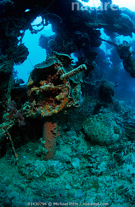 Engine room telegraph on the bridge of the wreck of the tanker 'Shinkoko Maru' Chuuk Lagoon, Federated States of Micronesia, BOAT PARTS,BOATS,MARINE,PACIFIC ISLANDS,TANKERS,TROPICAL,UNDERWATER,VERTICAL,WORKING BOATS,WRECKS,MICRONESIA,WORKING-BOATS, Michael Pitts