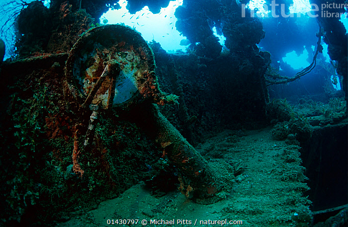 Engine room telegraph on the bridge of the wreck of the tanker 'Shinkoko Maru' Chuuk Lagoon, Federated States of Micronesia.  ,  BOAT PARTS,BOATS,MARINE,PACIFIC ISLANDS,TANKERS,TROPICAL,UNDERWATER,WORKING BOATS,WRECKS,WORKING-BOATS  ,  Michael Pitts