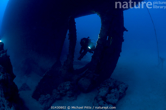 Wreck of the cargo ship 'Iouna'. Diver and ships single screw propellor. Wrecked between 1912-1918. Sharmo reef, Yanbu, Saudi Arabia, July 2010, ASIA,BOAT PARTS,BOATS,DIVING,MARINE,PEOPLE,TROPICAL,UNDERWATER,WATER PURSUITS,WORKING BOATS,WRECKS,ARABIA, Michael Pitts