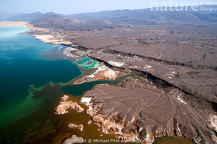 Lake Assal shoreline -  Africas lowest point at 515 feet below sea level, Djibouti, , March 2008  ,  AERIALS,AFRICA,BIODIVERSITY HOTSPOT,BIODIVERSITY HOTSPOTS ,EAST AFRICA,ELEVATED VIEW,HIGH ANGLE SHOT,HORN OF AFRICA,LAKES,LANDSCAPES,SALINE,SALT,WATER,EAST-AFRICA  ,  Michael Pitts