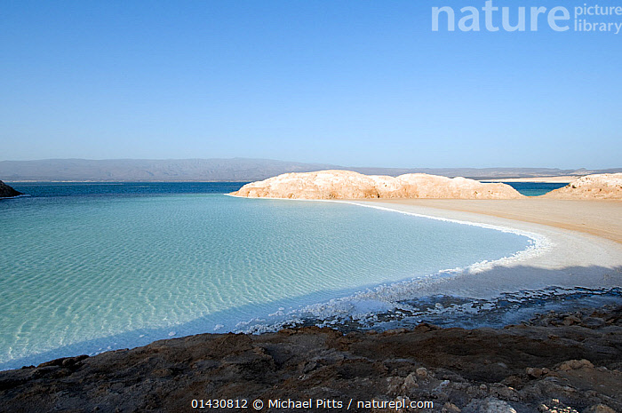 Lake Assal -  Africas lowest point at 515 feet below sea level , with dense concentrations of salt on the shoreline - Djiboutim , March 2008, AFRICA,BIODIVERSITY HOTSPOT,BIODIVERSITY HOTSPOTS ,EAST AFRICA,ELEVATED VIEW,HIGH ANGLE SHOT,HORN OF AFRICA,LAKES,LANDSCAPES,SALINE,SALT,WATER, Michael Pitts