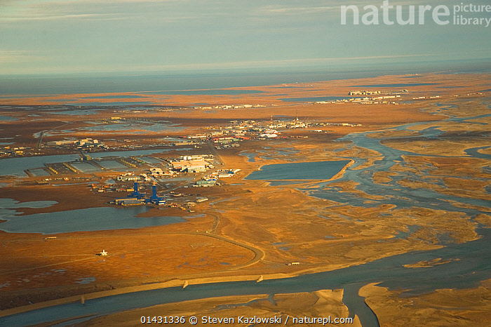 Aerial landscape view of Prudhoe Bay oil fields, central arctic coast, North Slope, Alaska., AERIALS,ARCTIC,DEVELOPMENT,ENERGY,FOSSIL FUELS,FUELS,INDUSTRY,LANDSCAPES,NORTH AMERICA,OIL,USA, Steven Kazlowski