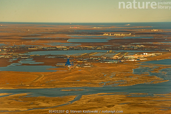 Aerial landscape view of Prudhoe Bay oil fields, central arctic coast, North Slope, Alaska.  ,  AERIALS,ARCTIC,DEVELOPMENT,ENERGY,FOSSIL FUELS,FUELS,INDUSTRY,LANDSCAPES,NORTH AMERICA,OIL,USA  ,  Steven Kazlowski