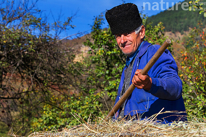 Farmer sitting on a horse carriage loaded with hay in the village of Isverna. Geoparcul Platoul Mehedinti, Romania, October 2012, EUROPE,FLORIAN MOELLERS,HAY,MAN,PORTRAITS,REWILDING,ROMANIA,WWE,EASTERN EUROPE,HORIZONTAL,PEOPLE,SMILING, Wild Wonders of Europe / Möllers