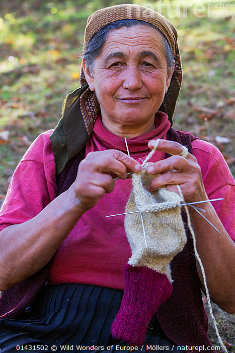 Woman (62 years old) knitting socks from own sheep wool in the garden of her nearby farmhouse in the village of Isverna. Mehedinti Plateau Geopark, Isverna, Romania, October 2012, EUROPE,FLORIAN MOELLERS,PORTRAITS,REWILDING,ROMANIA,VERTICAL,WOMAN,WWE,CRAFT,CRAFTS,EASTERN EUROPE,ELDERLY,KNITTING,SMILING, Wild Wonders of Europe / Möllers