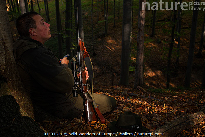 Romanian forester sitting in the forest, leaning at a Common beech (Fagus sylvatica) trunk at his shooting stand during a driving hunt for Wild boar (Sus scrofa). Mehadia, Caras Severin, Romania, October 2012  ,  CAMOUFLAGE,EASTERN EUROPE,GUNS,HORIZONTAL,PEOPLE,VERTEBRATES,ARTIODACTYLA,EUROPE,FLORIAN MOELLERS,FORESTS,HUNTING,MAMMALS,MAN,PATIENCE,PIGS,REWILDING,ROMANIA,SUIDAE,WWE  ,  Wild Wonders of Europe / Möllers